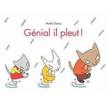 Genial-il-pleut.jpg