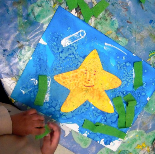 étoile e mer 001.jpg