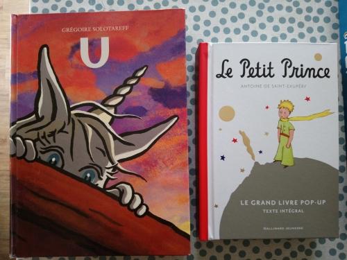 Livres objets Pop Up (1).JPG